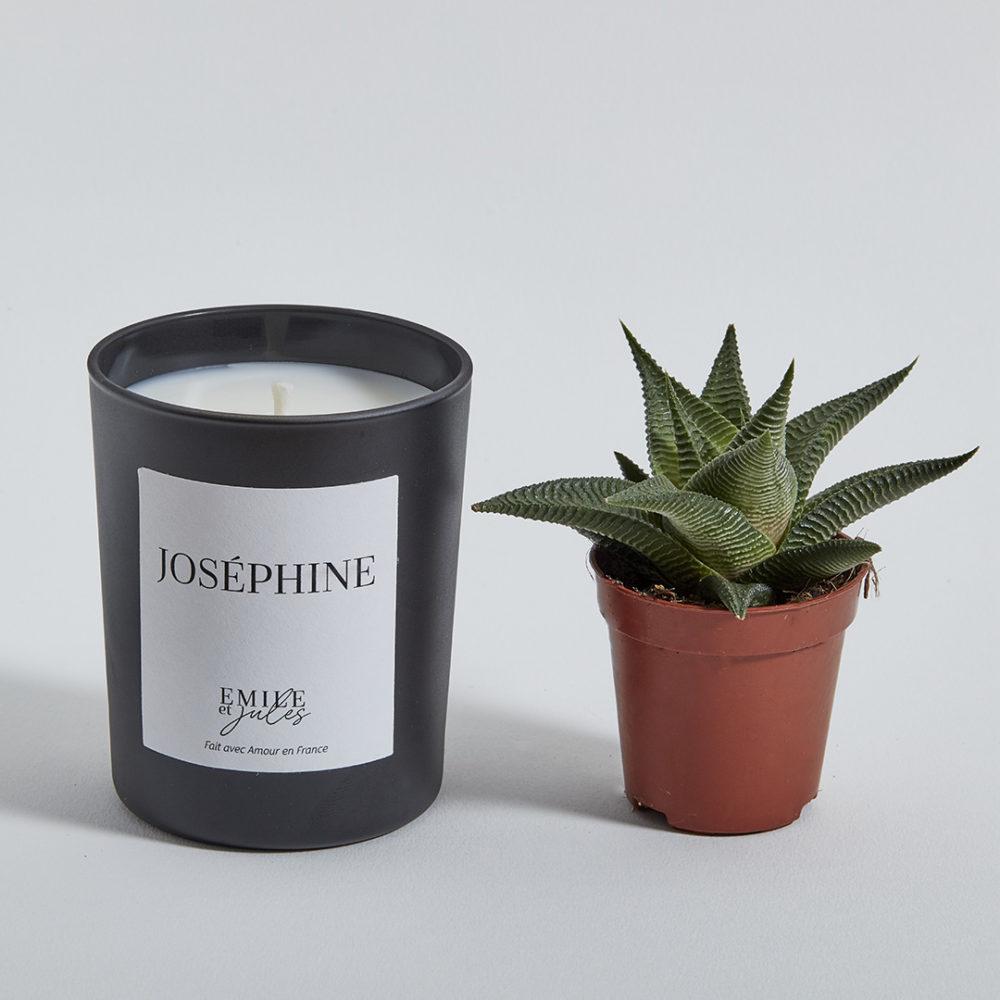 bougie-plante-josephine